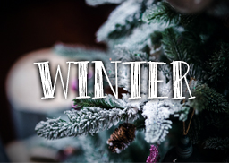 winter_logo_featured